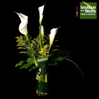 Arrangement Calla en vase