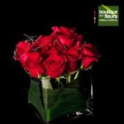 Roses rouges en vase
