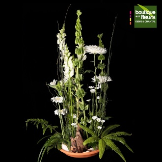 Corbeille blanche  Nature