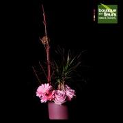 Dracena avec fleurs