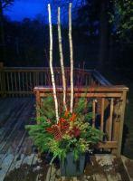 'Birch' Winter Urn
