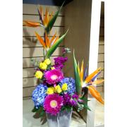 Tropical Garden Arrangement