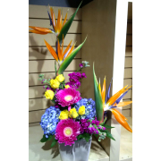 Tropical Garden Arrangement