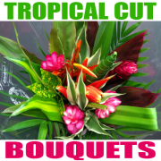 Tropical Cut Bouquet