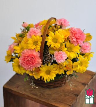 Beretania\'s Isabella Basket