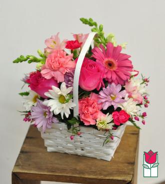 Beretania\'s Kaylee Basket