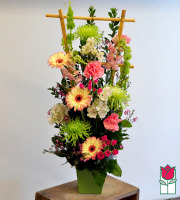 beretania florist peachy contemporary spring arrangement