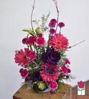 beretania florist gabriella contemporary spring arrangments