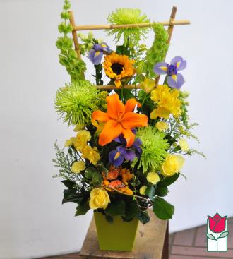 beretania florist eliana contemporary spring