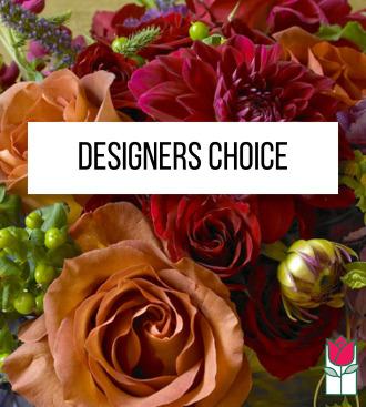 Designers Choice - Vibrant