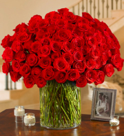 100 Extra Long Stem Red Roses
