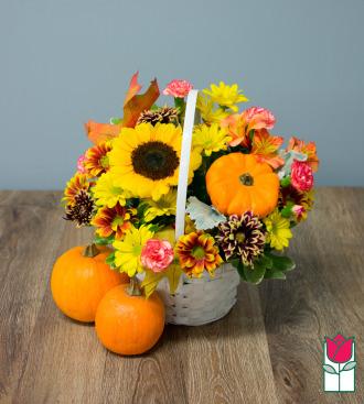 Beretania\'s Fall Basket - w/ Mini Pumpkin