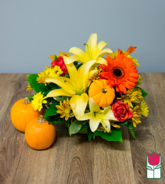 Beretania\'s Fall Centerpiece - w/ Mini Pumpkin