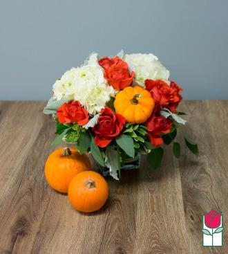 Beretania\'s Fall Compact Bouquet - w/ Mini Pumpkin