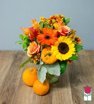 Beretania\'s Warmth Fall Bouquet - w/ Mini Pumpkin
