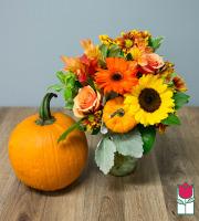 Beretania's Warmth Fall Bouquet - w/ Large Pumpkin