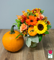 Beretania's Warmth Fall Bouquet - w/ Large Pumpkin