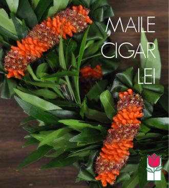 Maile Cigar Lei