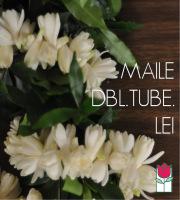 Maile Double Tuberose Lei