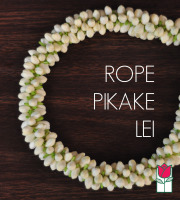 Double Rope Pikake (Limited Avail.)