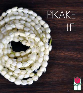[Out Of Season] Pikake Lei - 3 strands