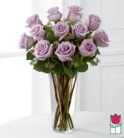 Beretania's Premium Lavender Rose Masterpiece (30% Larger flower)