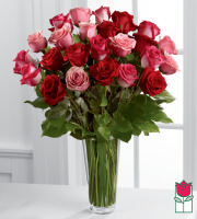 Beretania's 2 Dozen True Romance Rose Bouquet