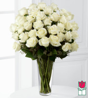 beretania florist 3 dozen long stem white rose bouquet honolulu rose delivery honolulu florist hawaii flower shop