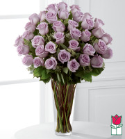 beretania florist 3 dozen long stem Lavender rose bouquet honolulu rose delivery honolulu florist hawaii flower shop