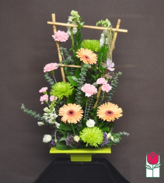 The BF Contemporary Spring Arrangement