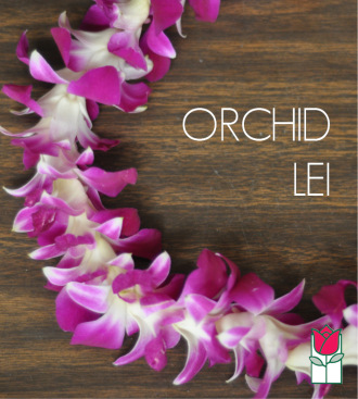 Single Dendro Orchid Lei