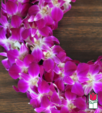 Double Dendro Orchid Lei Purple