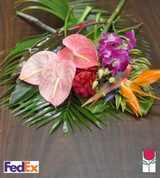 Taste of Aloha - Cut Flowers - [ship to mainland]