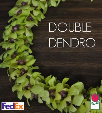 Double Dendro Orchid Lei