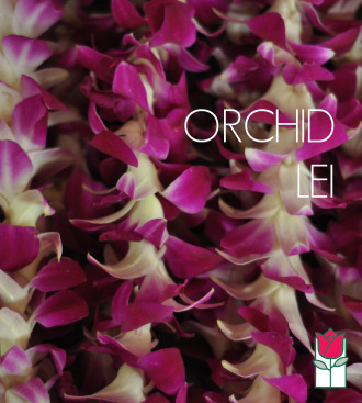 5 Single Dendro Orchid Lei