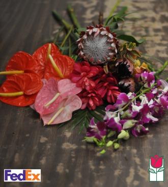 Abundant Hawaiian Holiday - Cut Flowers