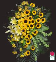 Beretania's Wilcox Wreath