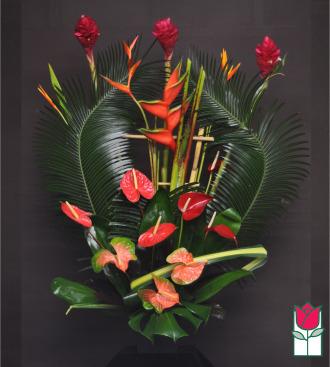 Beretania\'s Queen Tropical Arrangement