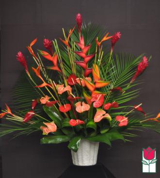 The BF Kalakaua Tropical Arrangement