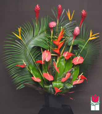 Beretania\'s Nuuanu Tropical Arrangement