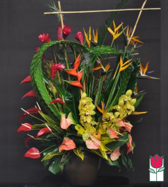 Beretania\'s Pali Tropical Arrangement