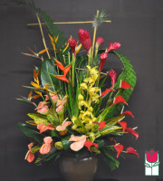Beretania's Poipu Tropical Arrangement