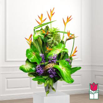 beretania florist pumehana tropical arrangement