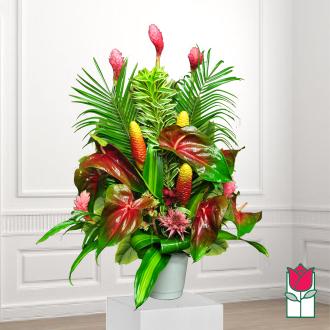 beretania florist birch tropical arrangement