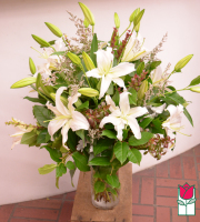 [UNAVAILABLE] Beretania's White Lily Bouquet