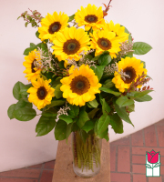 Beretania's Sunflower Bouquet