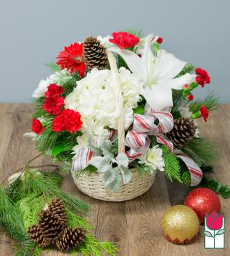 Beretania\'s Candy Cane Lane Basket
