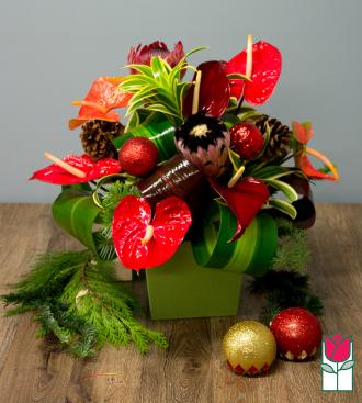 Beretania\'s Splendor Christmas Tropical