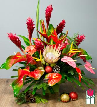 Beretania\'s Grand Christmas Tropical