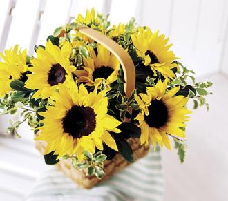 The FTD® Sunflower Basket
